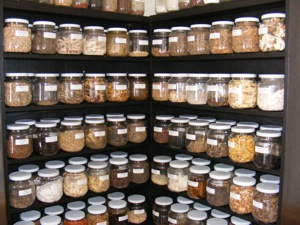 We use Herbal Medicine at our Flagstaff Acupuncture Clinic