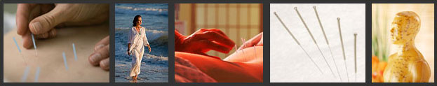 We offer a wide range of wholistic health services incuding Acupuncture and Chinese Herbal Medicine